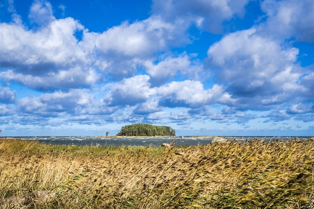 The coast of estonia at lahemaa national park