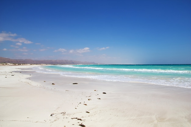 The coast of indian ocean, socotra island, yemen