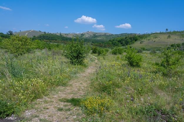 ジュグリョフスクの町の近くのヴォルガ川の海岸。ジグリ山塊。サマラスカヤルカ。夏。