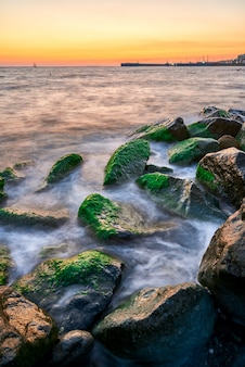 Coastal landscape with warm evening light when waves break on rocks covered with seaweed