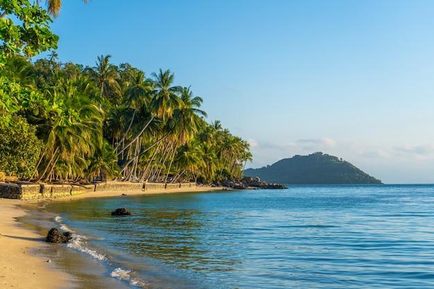 Coastline with sandy beach and palm trees on a tropical island