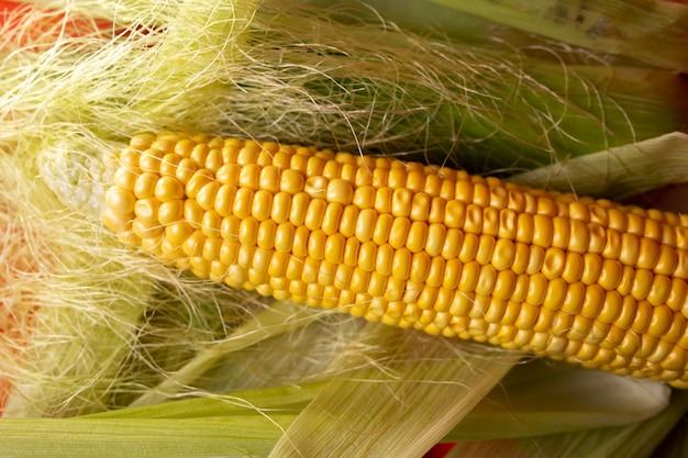 Початок кукурузы на листьях на красном виде сверху.