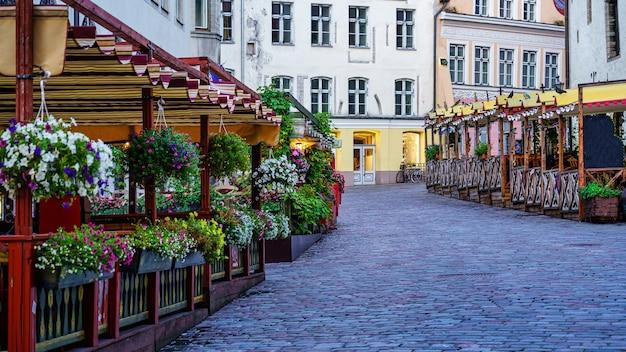 탈린 에스토니아의 꽃과 나무 벤치가 있는 자갈길