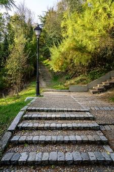 일몰시 푸른 나무와 가로등과 함께 걸을 수있는 공원의 조약돌 경로입니다. 부르고스.