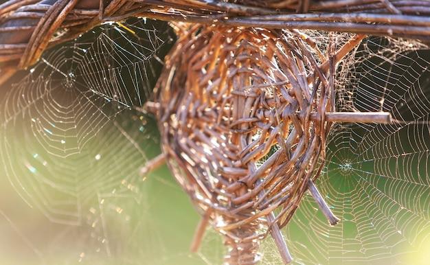 蜘蛛の巣または蜘蛛の巣柳の小枝の輪の形をしたパターンの周り。