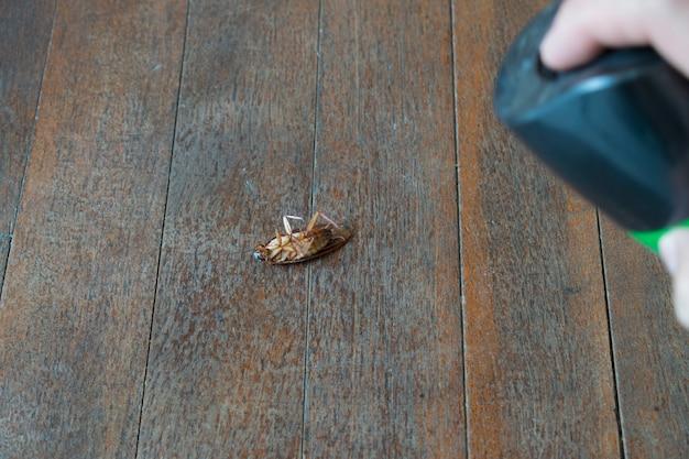Cockroach injection dead