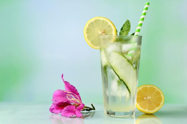 Бокал для коктейля, украшенный сицилийской лимонной мятой и огурцом на светоотражающем фоне