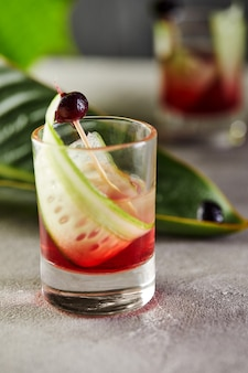 Cocktail vodka with blueberries in shots with a garnish with slices of cucumber and blueberries on sticks