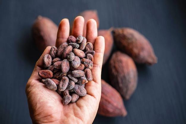 カカオ豆と乾燥ココア