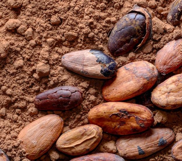 粉末のカカオ豆