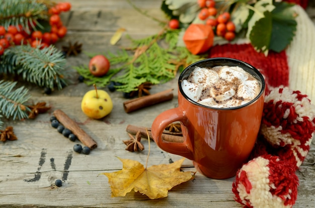 Cocoa or cup of coffee with tasty marshmallows, fir tree branch, red rowan tree berries