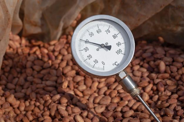 Температура ферментации какао, процесс ферментации какао-бобов, измерение температуры какао-бобов, ферментированных в деревянных бочках, для поддержания качества аромата какао.