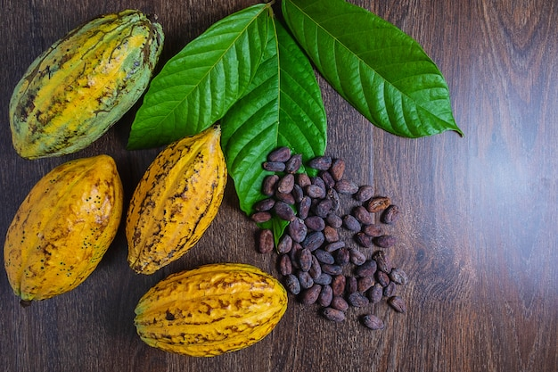 Cocoa fruit and cocoa beans on a wooden background