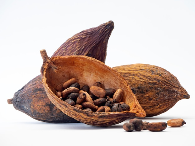 Cocoa pod ,beans and on white background