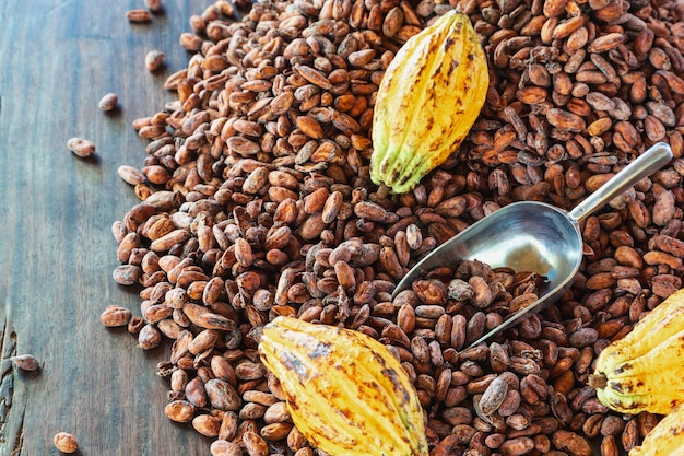 Cocoa pods and cocoa beans on a wood