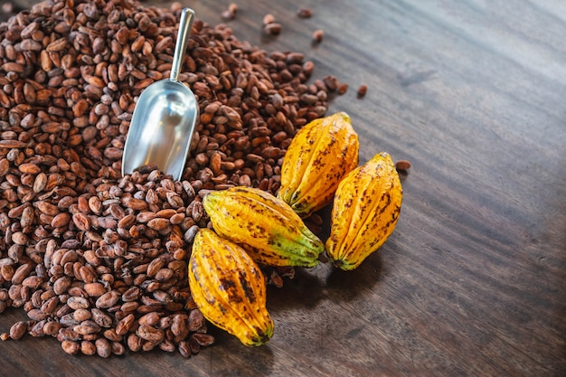 Cocoa pods and cocoa beans on wooden table