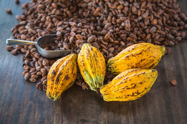 Cocoa pods and cocoa beans on a wooden