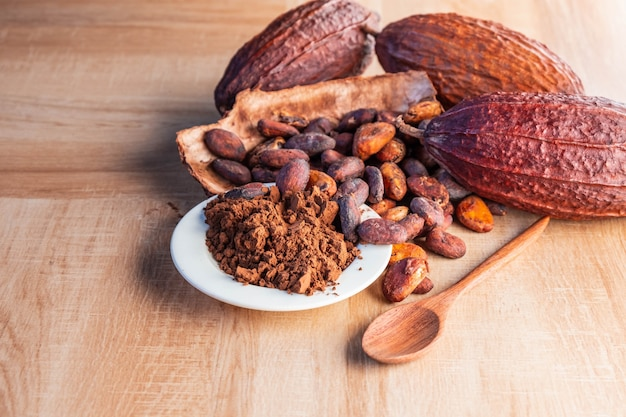 Cocoa powder and cocoa beans with cocoa pods on wooden table.