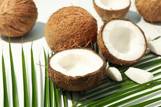 코코넛과 팜 지점 흰색에 가까이