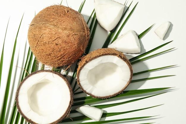 코코넛, 팜 지점 흰색, 평면도