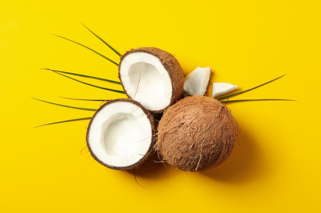 노란색, 평면도에 코코넛과 팜 지점