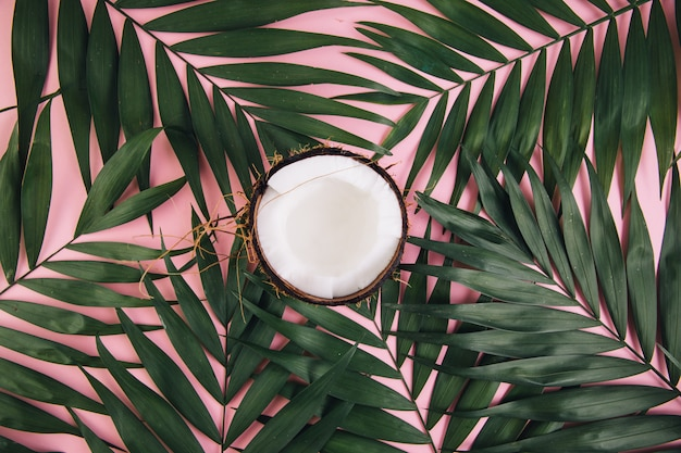 Coconut around palm leaves on a pink background.