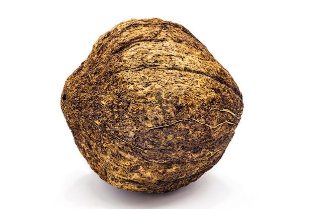 白い背景の上のシェルとブラジルナッツからのココナッツ、南アメリカからの一般的なクルミ
