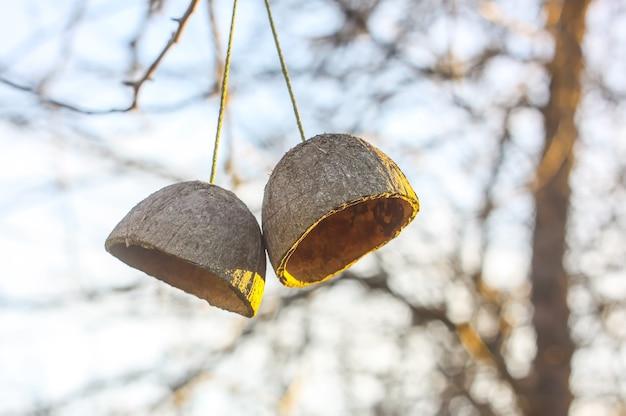 코코넛 과일 껍질이 나뭇가지에 매달려 있습니다. 봄 정원의 단순한 정통 장식.
