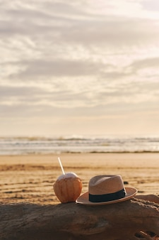 A coconut and hat on a tree trunk on the beach on a summer day