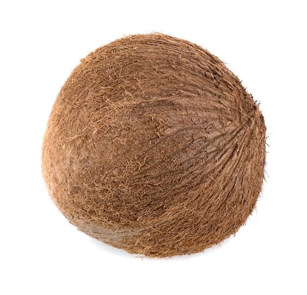 코코넛 절연입니다. 코코스 화이트. 코코넛 흰색 배경에 격리합니다.