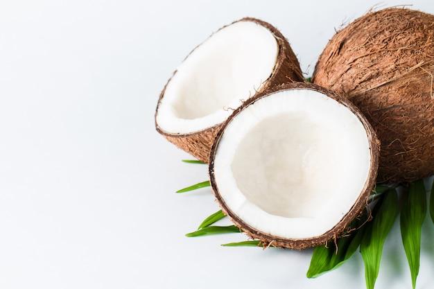 흰색 배경에 코코넛