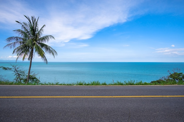 Coconut palm tree on side of asphalt road and tropical seascape scenery in the background
