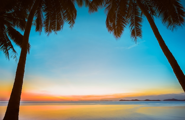 日没の熱帯海のビーチでココナッツのヤシの木のシルエット
