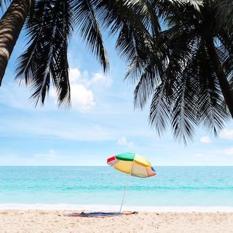 Coconut palm trees on the beach