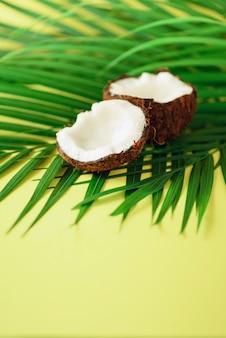 Coconut over tropical green palm leaves. pop art design, creative summer concept. raw vegan food.