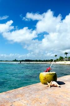 Noce di cocco con cannuccia al mar dei caraibi