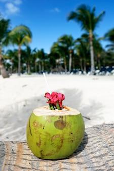 Кокосовый орех с соломинкой на пальме на пляже
