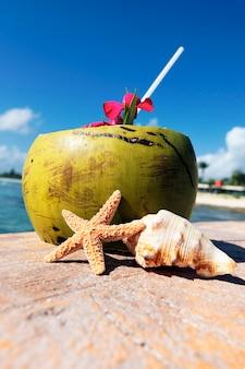 Noce di cocco con cannuccia e conchiglie di mare