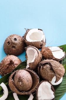Noce di cocco con foglie tropicali su sfondo blu.