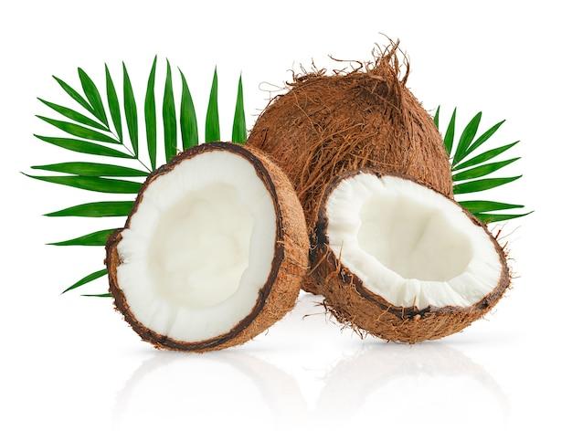 코코넛과 야자수 잎 흰색 배경에 클리핑 패스와 함께 격리