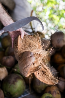Coconuts on the market