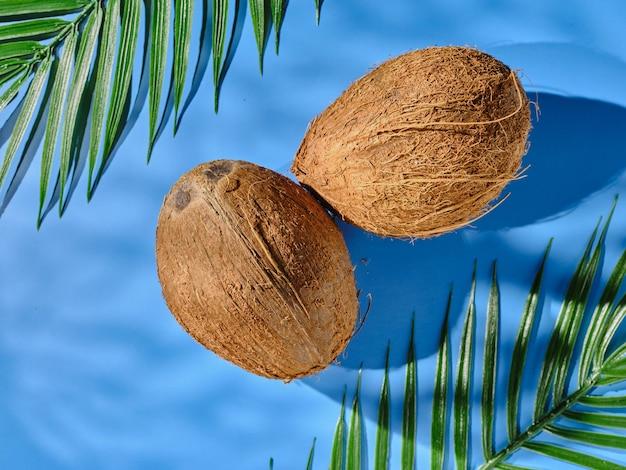 파란색 테이블과 야자수 잎에 코코넛