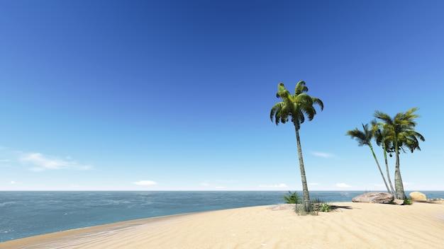 ビーチのココナッツ。