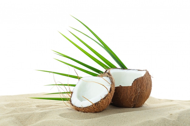 Coconuts and palm leaf on clear sea sand isolated on white background. summer vacation