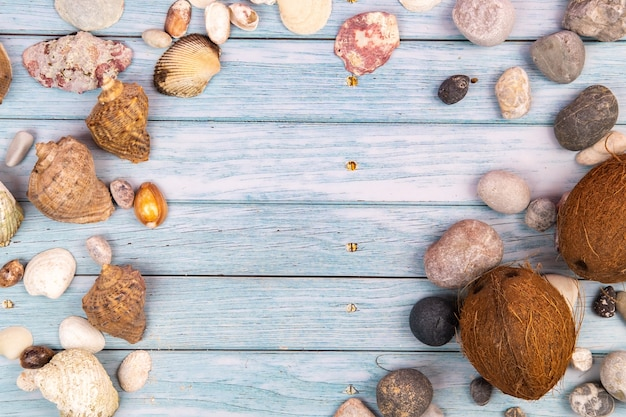 Coconuts, rocks and shells on a blue wooden background.marine theme