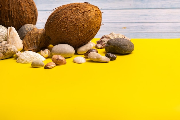 Coconuts, rocks and shells on a blue wooden background and a yellow background.marine theme