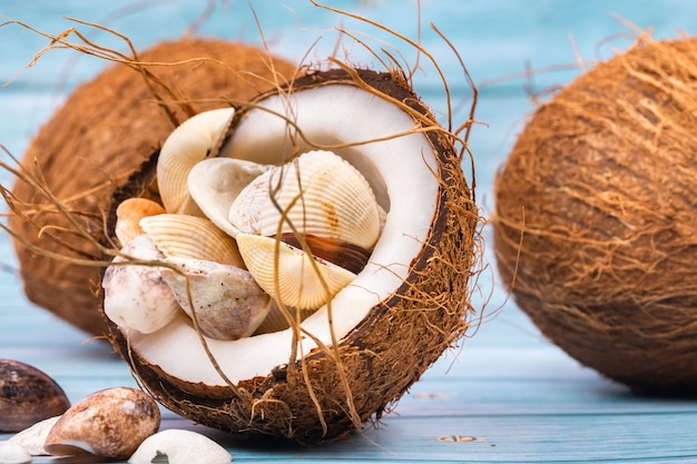 Coconuts and seashells on a blue wooden background marine theme