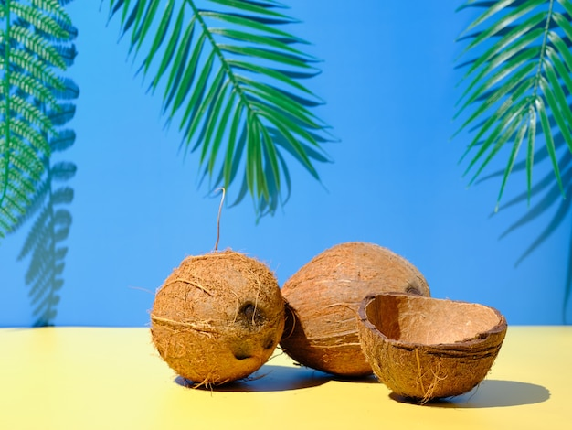 Coconuts on the table with palm branches