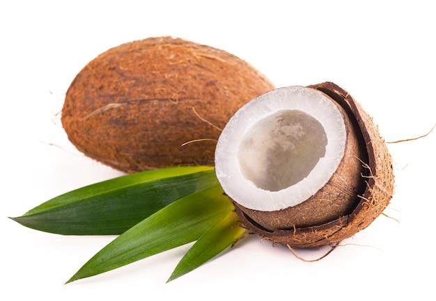 흰색 바탕에 잎 코코넛입니다.