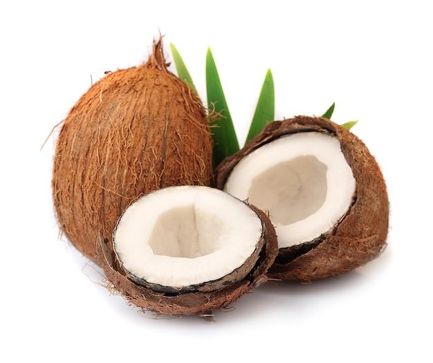 白い壁に葉を持つココナッツ